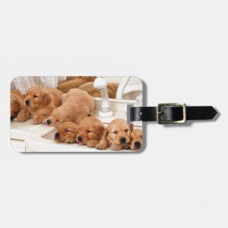 ¿Cuál es un baño? Los perritos lindos descubren Ba Etiquetas Bolsa