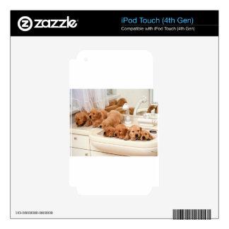 ¿Cuál es un baño? Los perritos lindos descubren Ba iPod Touch 4G Calcomanía