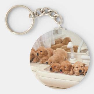 ¿Cuál es un baño? Los perritos lindos descubren Ba Llavero Redondo Tipo Pin