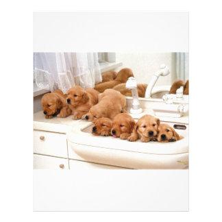 ¿Cuál es un baño? Los perritos lindos descubren Ba Membrete Personalizado