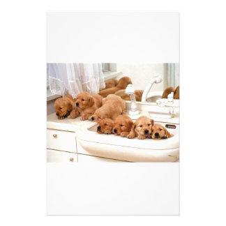 ¿Cuál es un baño? Los perritos lindos descubren Ba Papeleria Personalizada