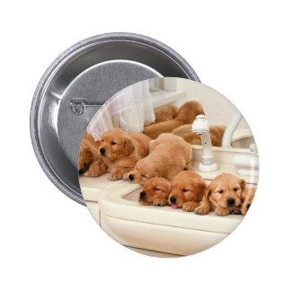 ¿Cuál es un baño? Los perritos lindos descubren Ba Pin Redondo De 2 Pulgadas