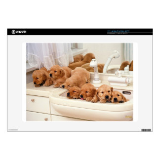 ¿Cuál es un baño? Los perritos lindos descubren Ba Portátil 38,1cm Skins