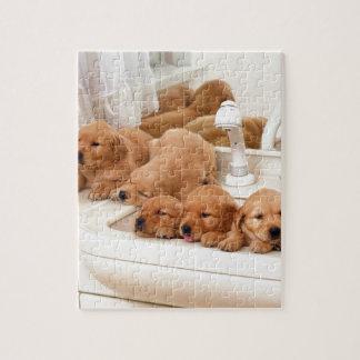 ¿Cuál es un baño? Los perritos lindos descubren Ba Puzzle Con Fotos