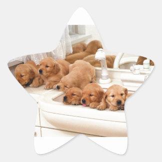 ¿Cuál es un baño? Los perritos lindos descubren Pegatina En Forma De Estrella