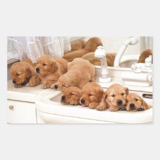¿Cuál es un baño? Los perritos lindos descubren Pegatina Rectangular