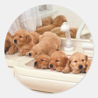 ¿Cuál es un baño? Los perritos lindos descubren Pegatina Redonda