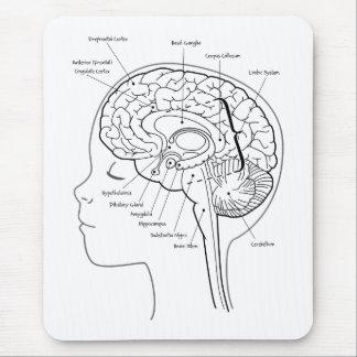 Cuál está en su cerebro alfombrilla de ratón