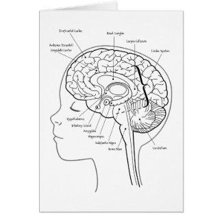 Cuál está en su cerebro tarjeta de felicitación
