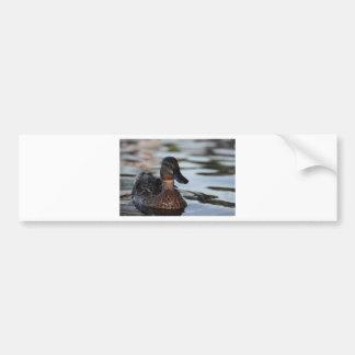 Cuál está encima… de pato etiqueta de parachoque