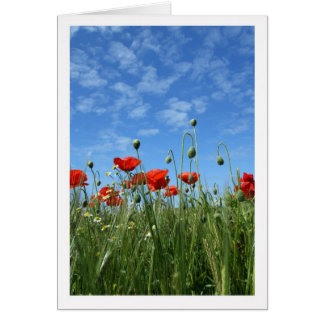 Cualquie ocasión - tarjeta de nota - amapolas roja