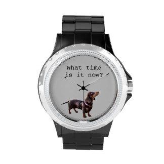 Cuándo ahora está negro del reloj del Dachshund