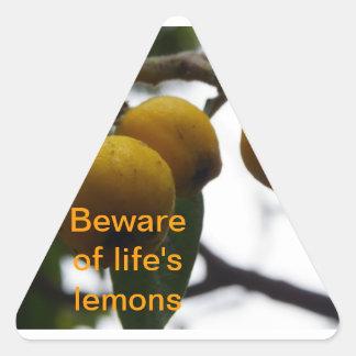 Cuando la vida le da los limones… pegatina triangular