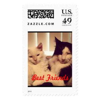 Cuando los mejores amigos disfrutan de un momento sellos