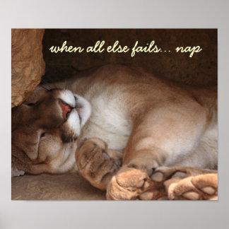 Cuando todo el otro falla el poster de la siesta