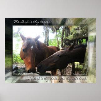 ¿Cuántos caballos? Poster