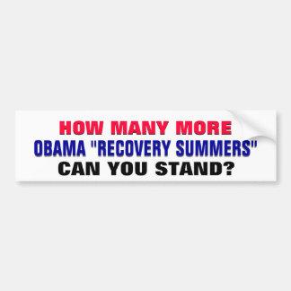 ¿Cuántos veranos de la recuperación de Obama puede Pegatina Para Auto