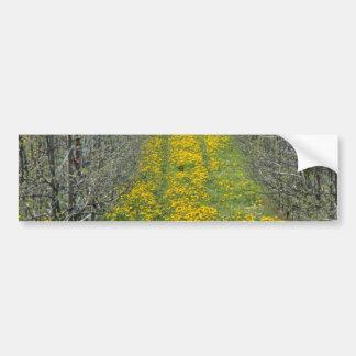 cuarto de niños de árbol amarillo en la primavera pegatina de parachoque