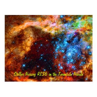 Cuarto de niños estelar R136 en la nebulosa del Ta Tarjeta Postal