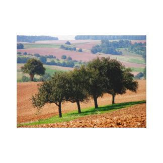 cuatro árboles de fruta en paisaje de campo, Kraic