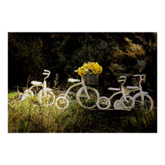 Cuatro blanco Trikes Poster