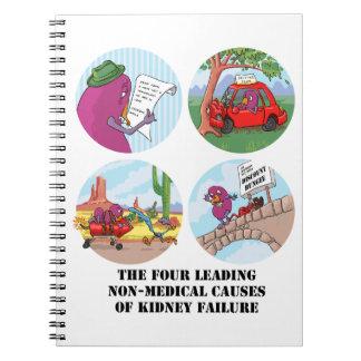 Cuatro causas principales de la insuficiencia rena note book
