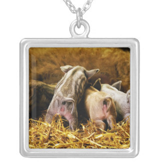 Cuatro cerdos de Mangalitsa del cochinillo del beb Joyerias