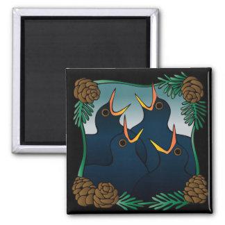 Cuatro (colly) pájaros de llamada imán cuadrado