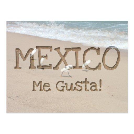 Cuatro Egrets; Recuerdo de México Tarjeta Postal
