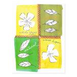 cuatro flores postales