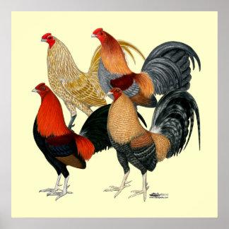 Cuatro gallos de pelea posters