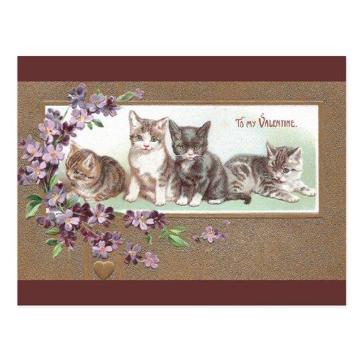 Cuatro gatitos exudan Lurve