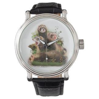 Cuatro hurónes en su hábitat salvaje relojes