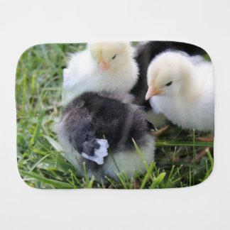 Cuatro negros y polluelos amarillos del pollo del paños para bebé