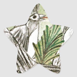 Cuatro pájaros de llamada pegatina forma de estrella personalizadas