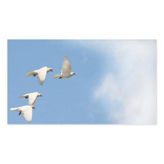 Cuatro palomas que vuelan tarjetas de visita