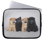 Cuatro pequeños perritos del perro chino de perro  fundas computadoras