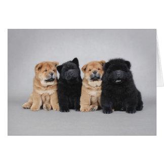 Cuatro pequeños perritos del perro chino de perro tarjeta de felicitación