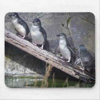 Cuatro pequeños pingüinos tapete de ratón