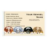 Cuatro perritos australianos del pastor tarjeta de visita