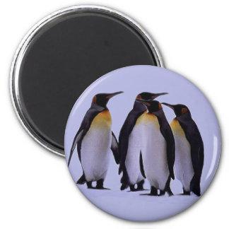 Cuatro pingüinos imán redondo 5 cm