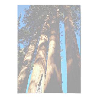 Cuatro secoyas, parque nacional de secoya, anuncio personalizado