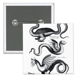 Cuatro tipos de dragón pin cuadrado