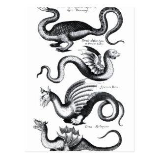 Cuatro tipos de dragón tarjeta postal