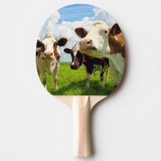 Cuatro vacas de charla pala de tenis de mesa