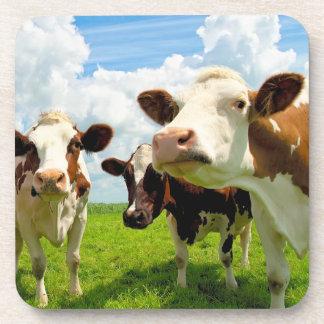 Cuatro vacas de charla posavasos de bebidas