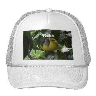 Cuba Grapefruit Hat