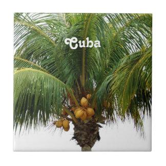 Cuba tropical tejas