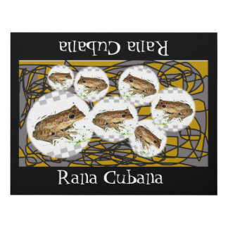 CUBAN FROGS POSTER, i Art and Designs