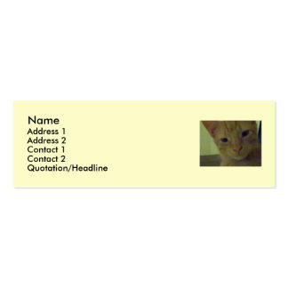 Cubby Calling Card Business Card Template